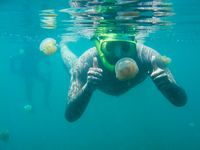 berpose bersama stingless jellyfish
