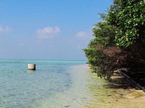 pantai LIPI pulau pari