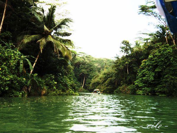 Pemandangan Hijau Sekeliling Sungai