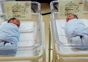 Ini Dia Bayi Kembar Rieke Dyah Pitaloka