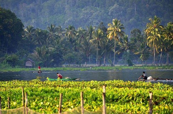 Merasakan Sensasi Alam dan Keramahan Penduduk di Danau Ranau