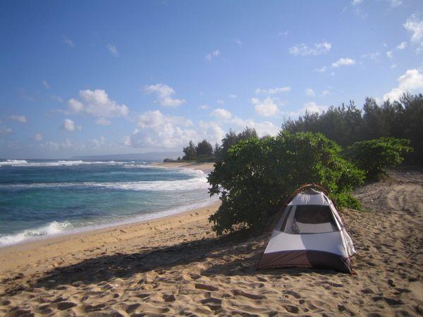 berkemah asyik di tepi pantai (thebeachs.info)