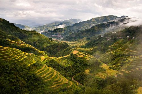Terasering Banaue (bestourism.com)