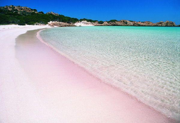 Pantai Pink di Pulau Komodo (Sumber: sofluna.com)