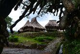 Kembali ke Masa Lalu di Kampung Tradisional Wologai, NTT