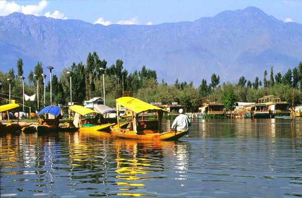 Dal Lake (indiacities.info)
