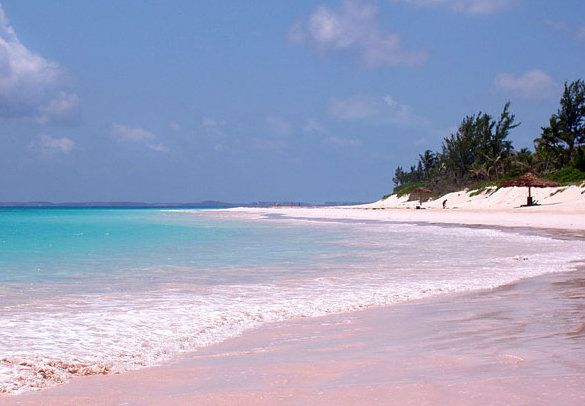 Pink Sands Beach (best-beaches.com)
