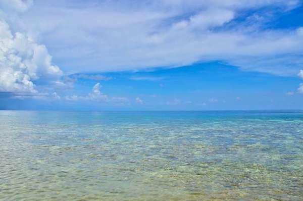 [imagetag] Pantai dekat Danau Ubur-ubur (dok. Bagus Sangaji Riwanto/ACI)