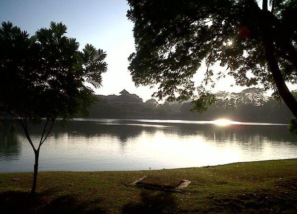 Salah satu sudut danau di UI (zoothera.wordpress.com)