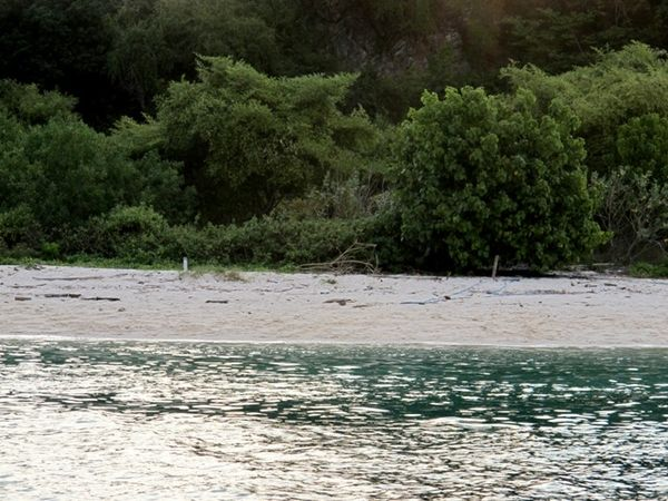 Penampakan pantai sepi nan indah di Pulau Bidadari (Shafa/detikTravel)
