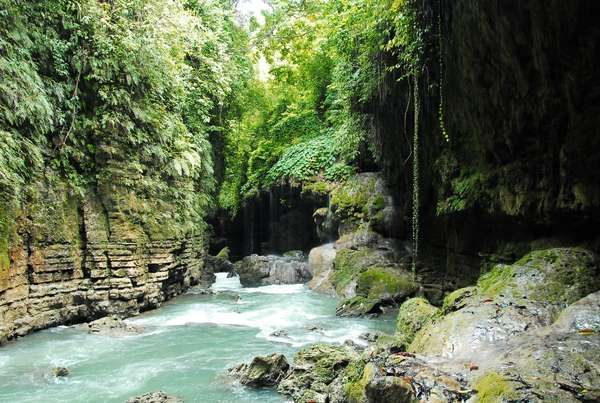 Pemandangan di Green Canyon (Shafa/detikTravel)