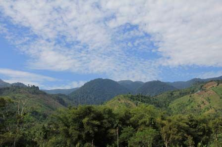 Taman Nasional Gunung Leuser (indonesia.travel)