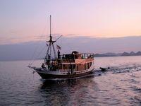 Perahu yang melaju tenang di pagi yang masih muda (Shafa/detikTravel)