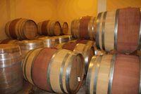 Tempat penyimpanan anggur sebelum dimasukkan ke botol.