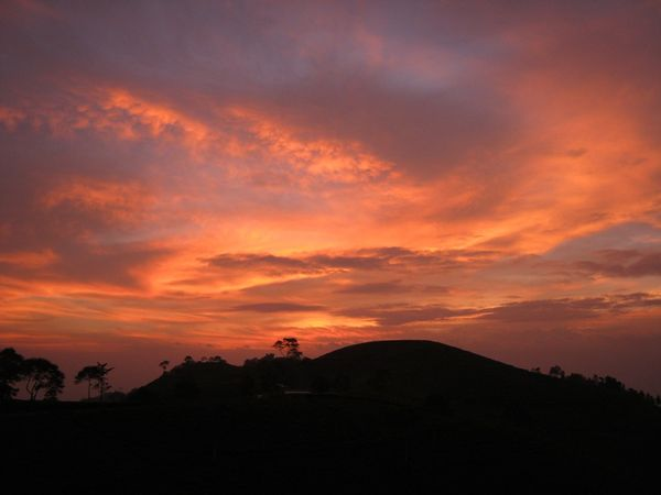 Senja Kebun Teh Karanganyar
