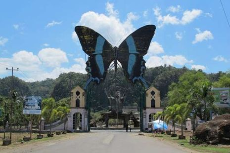 Terbang Bersama Kupu-kupu di 4 Tempat Ini