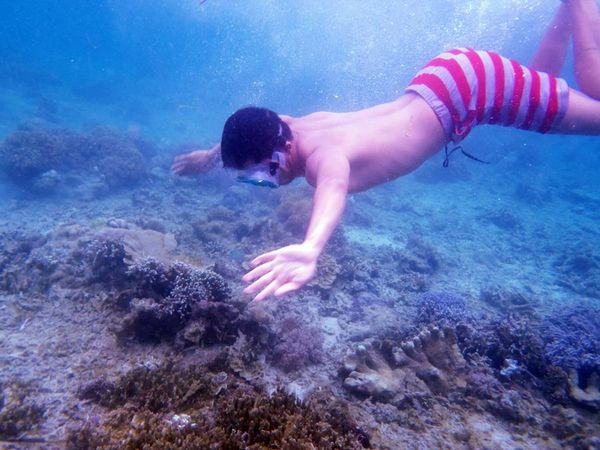 Bawah laut derawan