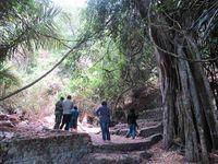 Area Kuburan Trunyan tak terlalu besar. Naik beberapa anak tangga, tibalah di area kuburan utama. Walaupun siang hari dan matahari cukup terik, suasana mistis tetap kental terasa. (Sastri/ detikTravel)