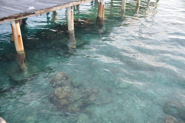 Batu karang dengan air laut biru
