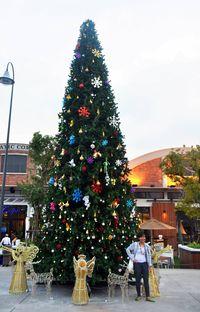 pohon natal