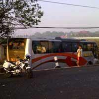 Bus Mira Nyungsep di Persawahan, Penumpang Semburat