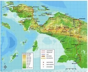 Perang Suku Pecah Usai Anggota DPRD Tikam Pejabat Pemda, Wamena Mencekam