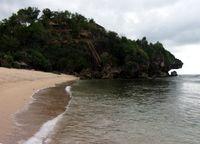 Sisi kiri pantai sundak terdapat bukit hijau yang sekilas mirip dengan hewan iguana (Herni/detikTravel)
