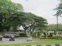 Jalanan di sekitar Lapangan Merdeka sangat bersih, trotoarnya diberi pagar. Di kawasan ini terdapat beberapa gedung bersejarah, salah satunya Sarawak Museum yang bisa dikunjungi wisatawan (Sastri/ detikTravel)