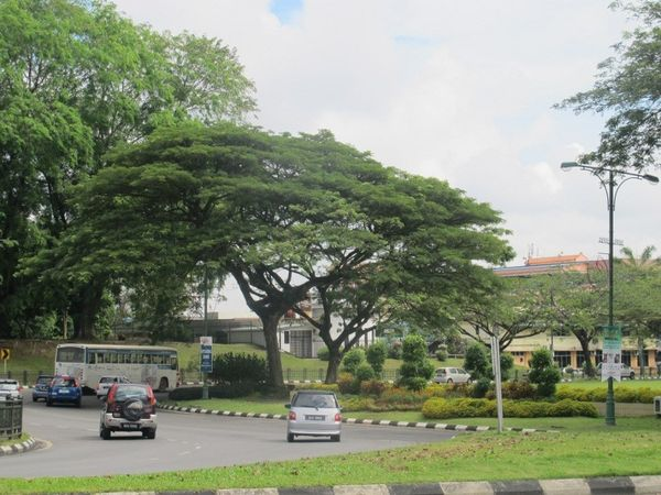 Kuching, Kota di Malaysia yang Bersih Banget!