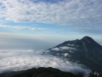 Amazing! Sabana nan Hijau di Merbabu