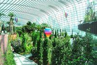 Didesain futuristik dan ramah lingkungan, sejatinya taman ini dibangun sebagai bentuk keprihatinan atas kurangnya ruang terbuka hijau di Singapura (Agus/detikTravel)