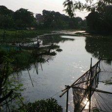 Situ Mangga Bolong, Sumber Resapan Air di Jakarta yang Terabaikan