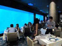 Dari dalam restoran, Anda bisa melihat sekitar 50 ribu ikan dari puluhan spesies yang berlalu-lalang. Bahkan, Anda juga bisa melihat ikan manta yang biasa ditemukan di lautan dengan kedalaman puluhan meter. Wow! (Afif/detikTravel)