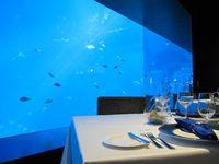 Ocean Restaurant pun bisa menjadi tempat romantis bagi Anda dan pasangan. Rasanya makan malam di sini, benar-benar seperti di bawah laut (Afif/detikTravel)