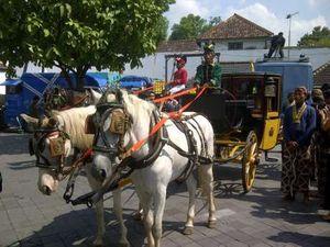 Ini Rute Kereta Kuda Royal Wedding Yogya