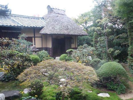 Keren! Taman di Kuil Jepang Ini Tidak Berubah Sejak 2,5 Abad Lalu