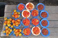 Di bagian kios sayuran yang paling banyak dijual adalah sawi, bayam, kembang kol, dan pepaya muda. Ada pula tomat dan lombok (cabai) yang dijual per piring (Sastri/detikTravel)