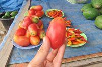 Salah satu temuan unik di pasar ini adalah tomat lonjong. Tomat jenis ini rasanya tak terlalu asam (Sastri/detikTravel)