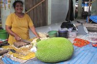 'Temuan' unik lainnya adalah nangka yang berukuran sangat besar. Rupanya inilah ukuran standar buah nangka di Atambua (Sastri/detikTravel)