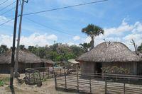 Masuk ke wilayah Timor Leste, pemandangan jalanan tak jauh berbeda dengan yang ada di Pulau Timor bagian barat. Rumah-rumahnya serupa, lanskapnya pun sama (Sastri/ detikTravel)
