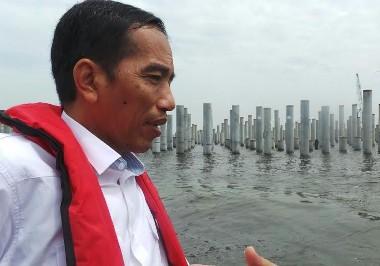 Tinjau Pembangunan Pelabuhan Kali Baru, Jokowi Naik Kapal Pandu Pelindo