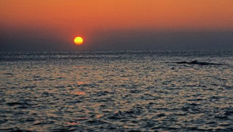Ini Penjelasan Lengkap BMKG Soal Fenomena Surut di Laut Karangantu Banten