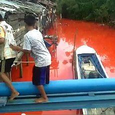 Warna Air Sungai di Bontang Berubah Misterius Menjadi Merah Darah