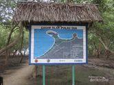 Melihat Aksi Burung Liar di Cagar Alam Pulau Dua, Serang
