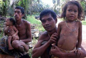 22 Tahun Dampingi Suku Rimba di Jambi, LSM Lingkungan ini Raih Kalpataru