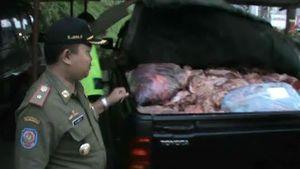 Tepergok Jual 4,2 Kuintal Daging Gelonggongan, Zubaidy Diamankan Polisi