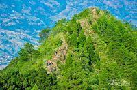 Satu Lagi Gunung yang Bisa Didaki di Bandung