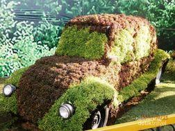 Uniknya Mobil dari Tumbuhan