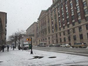 WNI Cerita Soal Badai Salju Dahsyat di New York, Begini Suasananya