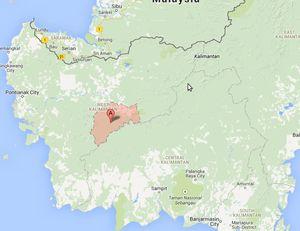 Ratusan Warga Terjangkit Rabies, 2 Kabupaten di Kalbar Diisolasi
